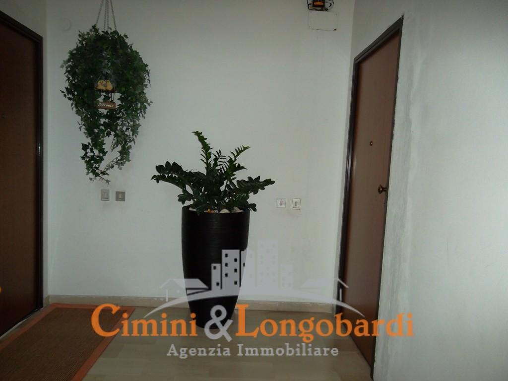 Sant'Egidio Spazioso appartamento in buono stato - Immagine 7