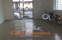 Nereto Locale commerciale/artigianale/ufficio centralissimo - Immagine 3