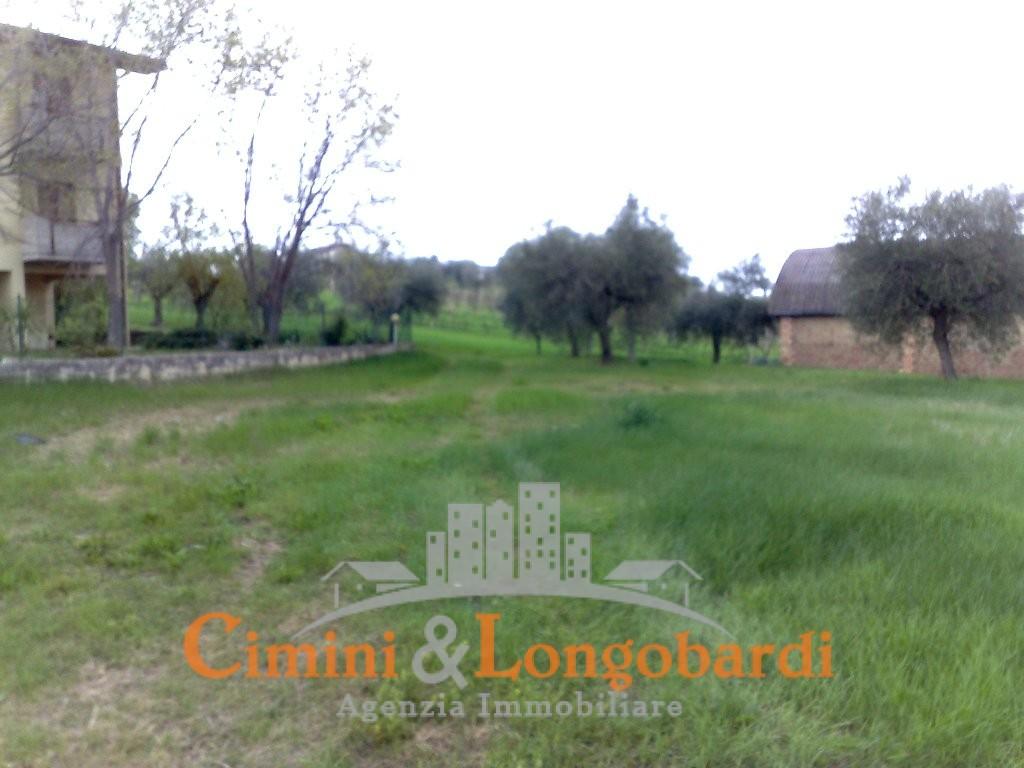 Terreno edificabile torano nuovo per casa singola o for Passi per l acquisto di terreni e la costruzione di una casa