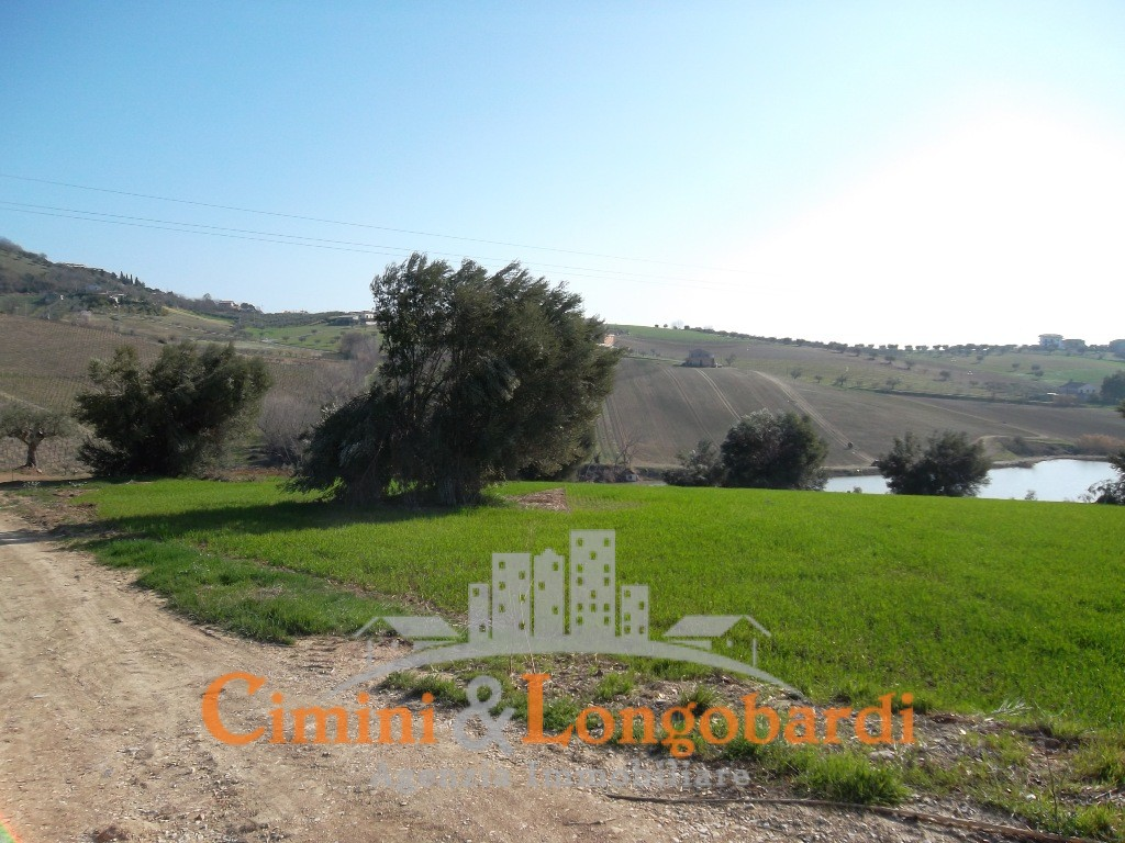 Colonnella vendesi terreni edificabili panoramici con progetto - Immagine 6