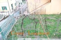 Casa singola a Sant'Omero - Immagine 10