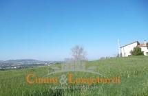 Terreno edificabile Tortoreto - Immagine 1