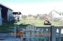 VIlla con 2 appartamenti indipendenti e terreno - Immagine 10