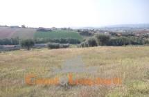 Terreni Ancarano - Immagine 2