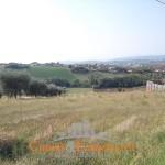 Terreni Ancarano
