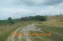 Terreno di 12 ettari con casolare - Immagine 2