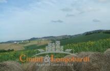 Terreno di 12 ettari con casolare - Immagine 3