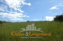 Casa singola con terreno - Immagine 10