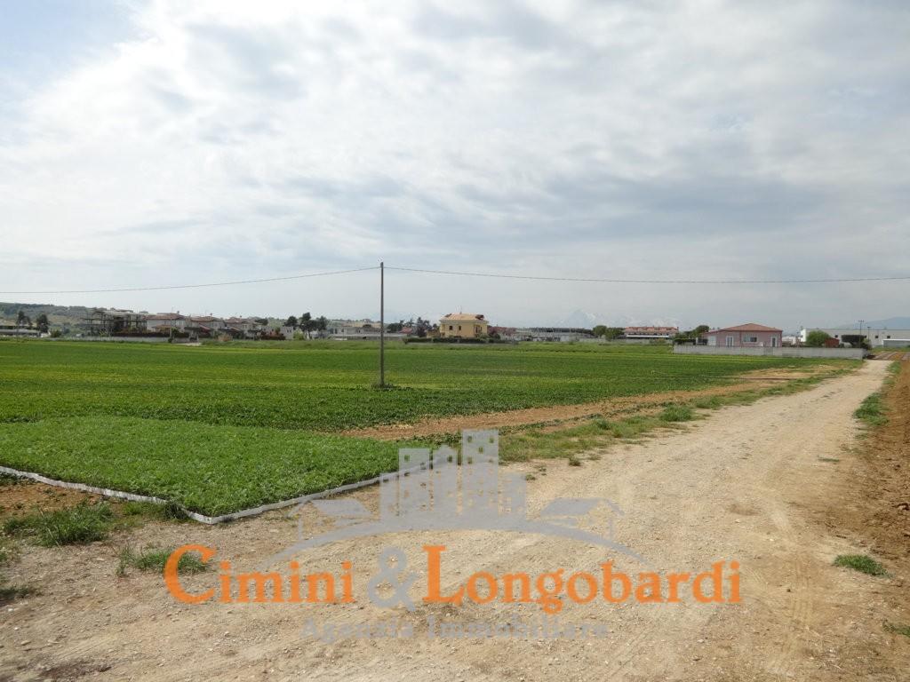 Terreno agricolo in posizione pianeggiante - Immagine 4