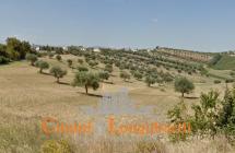 Terreno edificabile in posizione collinare e panoramica - Immagine 2