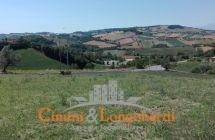 Terreno agricolo di mq 13.000 con possibilità di edificare casa singola - Immagine 1