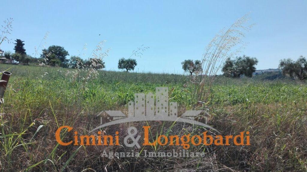 Terreno agricolo di mq 13.000 con possibilità di edificare casa singola - Immagine 4