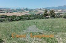 Terreno agricolo di mq 13.000 con possibilità di edificare casa singola - Immagine 2