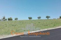 Terreno agricolo di mq 13.000 con possibilità di edificare casa singola - Immagine 5