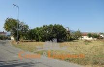 Casale con terreno zona Torano Nuovo - Immagine 5