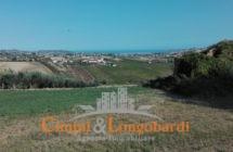Terreno di mq 40.000 con grande casale e bellissima vista mare - Immagine 4