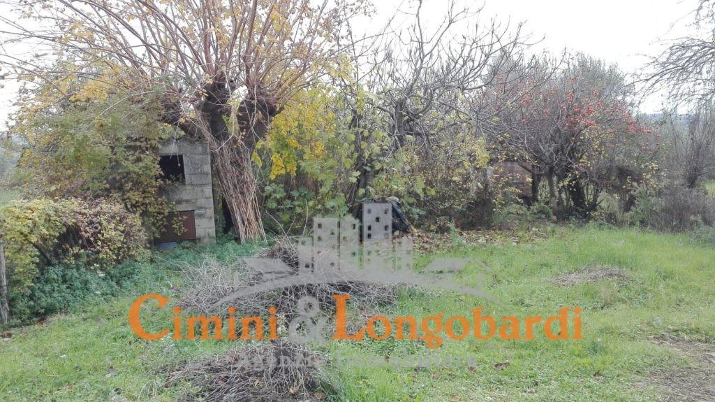 Casolare con terreno - Immagine 6