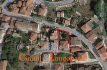 Casa singola con terreno - Immagine 2