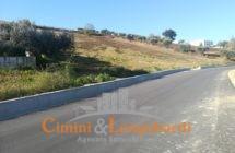 Torano Nuovo Casolare con terreno agricolo - Immagine 3