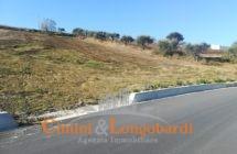 Torano Nuovo Casolare con terreno agricolo - Immagine 4