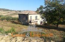 Torano Nuovo Casolare con terreno agricolo - Immagine 1