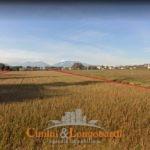 Terreno Edificabile/Agricolo zona residenziale