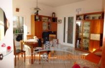 –Appartamento a soli € 35.000– - Immagine 3