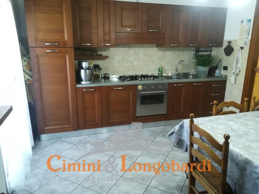 Casa singola, bifamiliare a Tortoreto zona Salino - Immagine 4