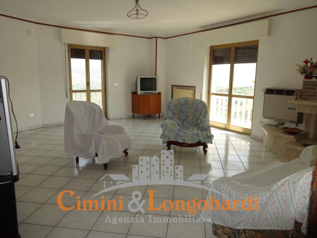 Villa con 2 appartamenti e terreno di 7.000 mq - Immagine 9