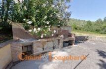 Casa singola con mq 10.000 di terreno - Immagine 4