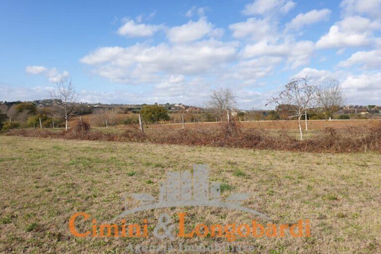 Terreno agricolo zona Santa Scolastica.. Corropoli - Immagine 3